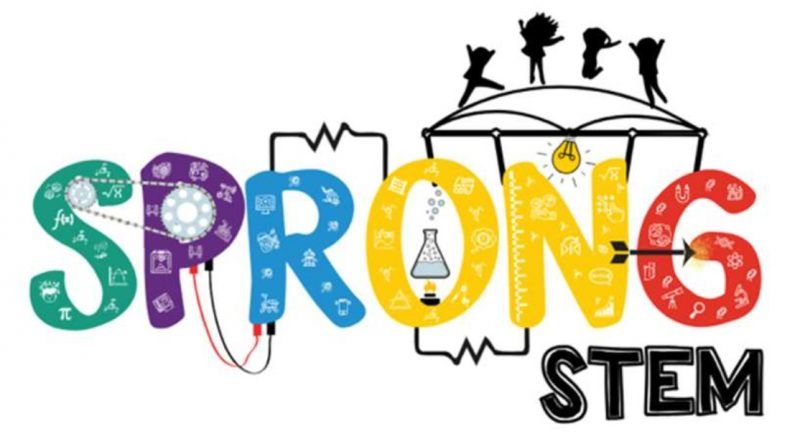 Logo: Consortium STEM: crossing boundaries for learning and development